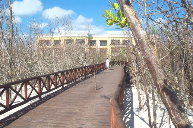 path_from_beach_to_Maya1